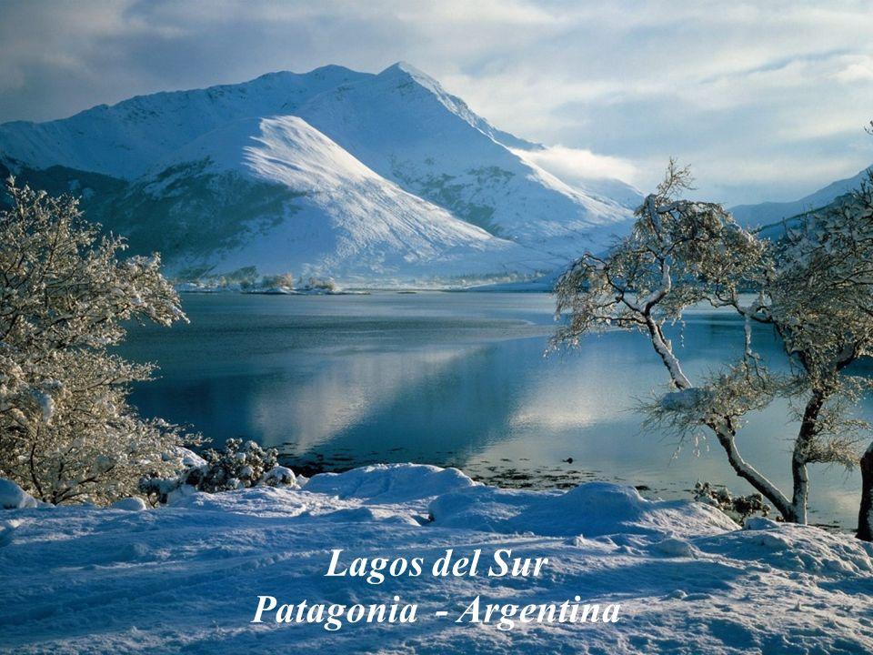Lagos del Sur Patagonia - Argentina