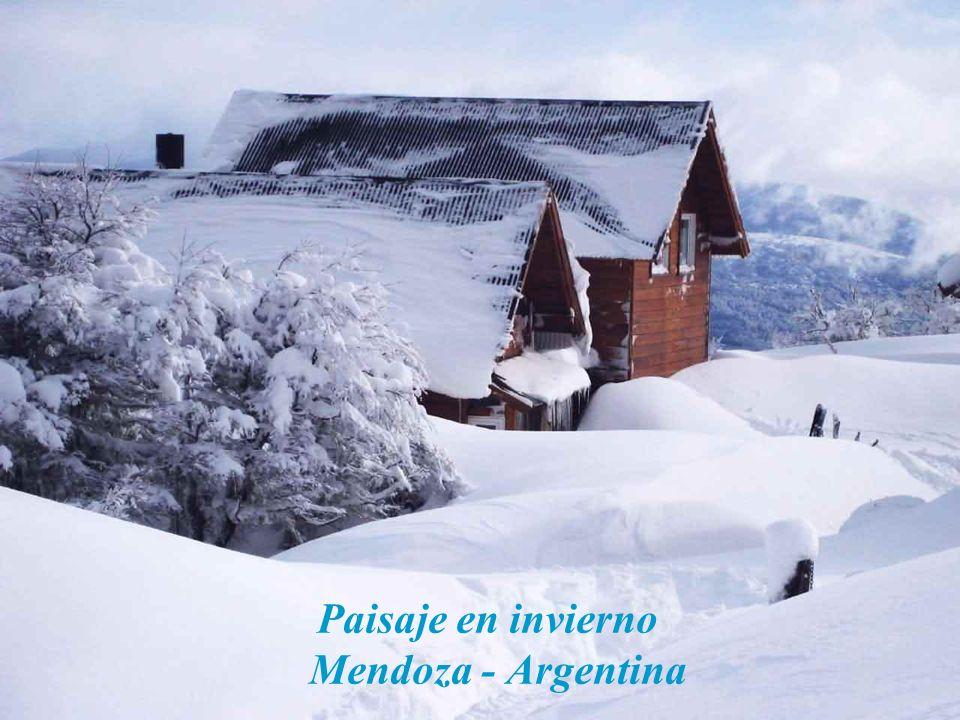 Paisaje en invierno Mendoza - Argentina