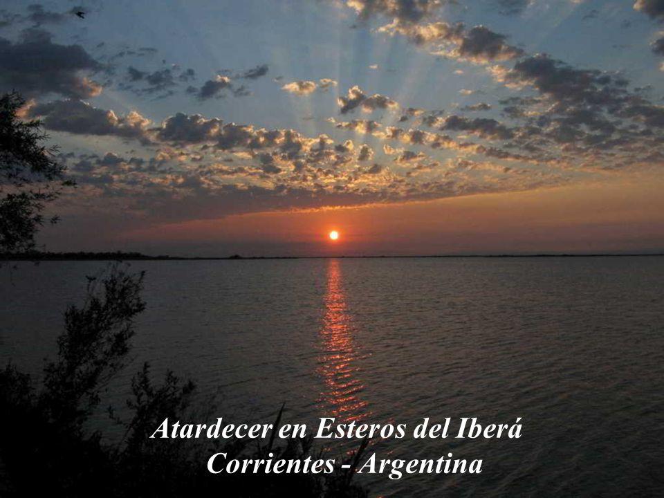 Atardecer en Esteros del Iberá Corrientes - Argentina