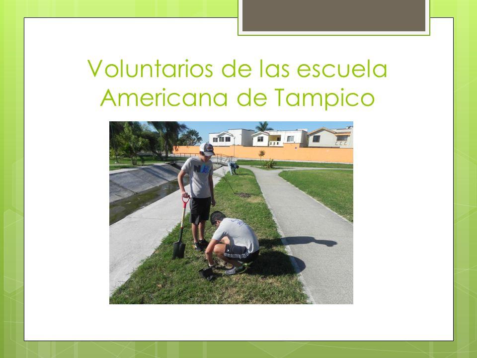 Voluntarios de las escuela Americana de Tampico