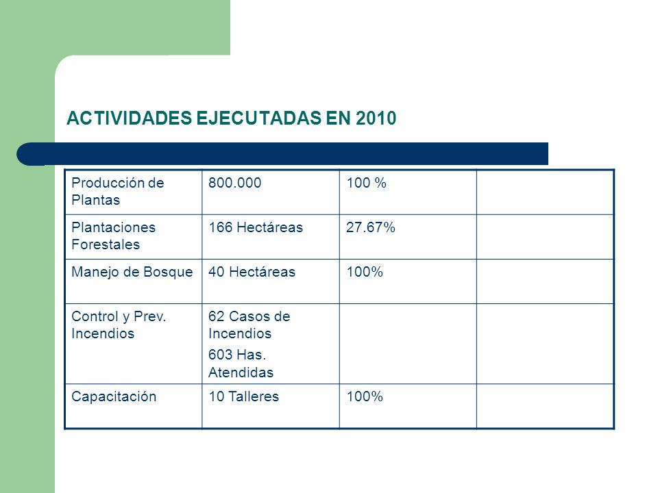 ACTIVIDADES EJECUTADAS EN 2010