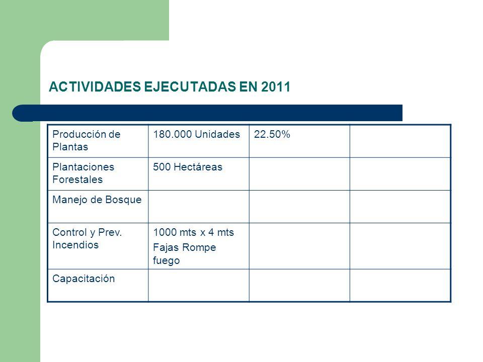 ACTIVIDADES EJECUTADAS EN 2011