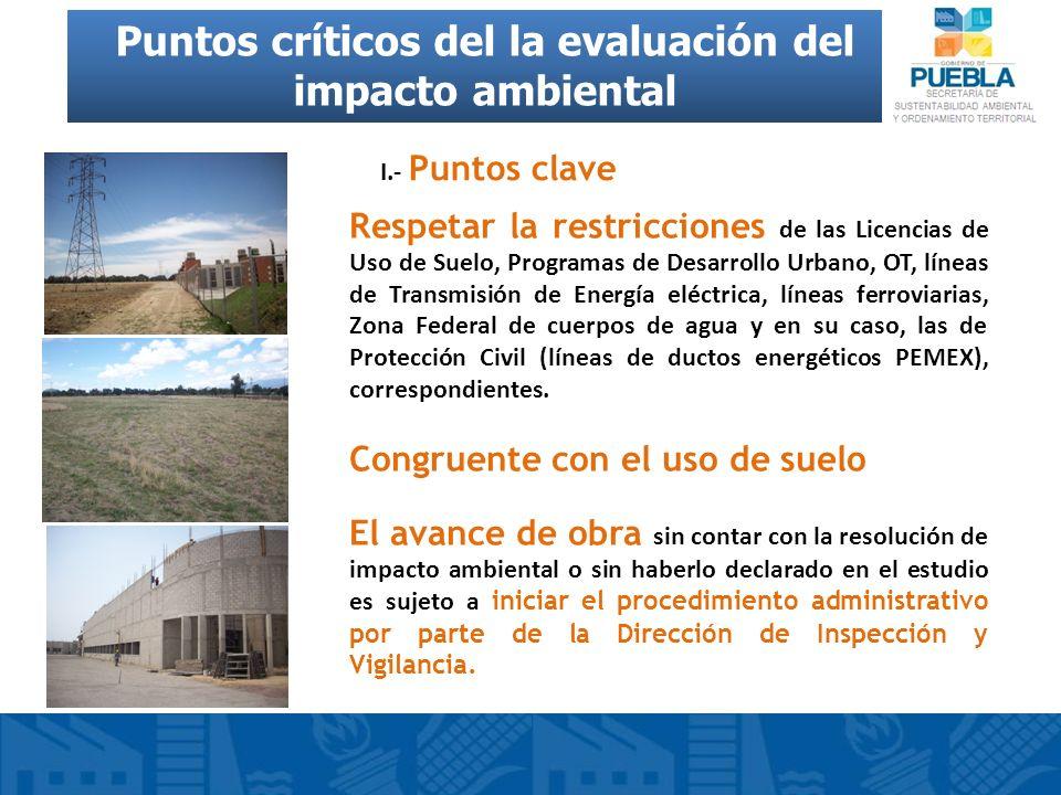 Puntos críticos del la evaluación del impacto ambiental