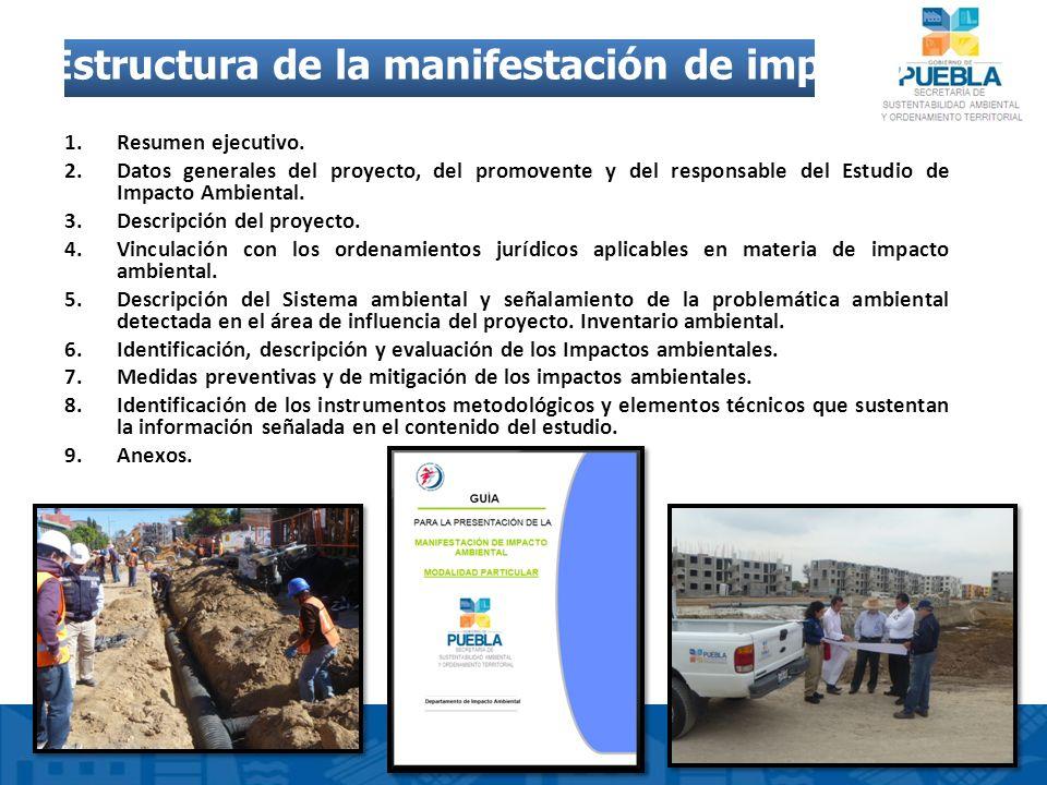 Estructura de la manifestación de impacto ambiental