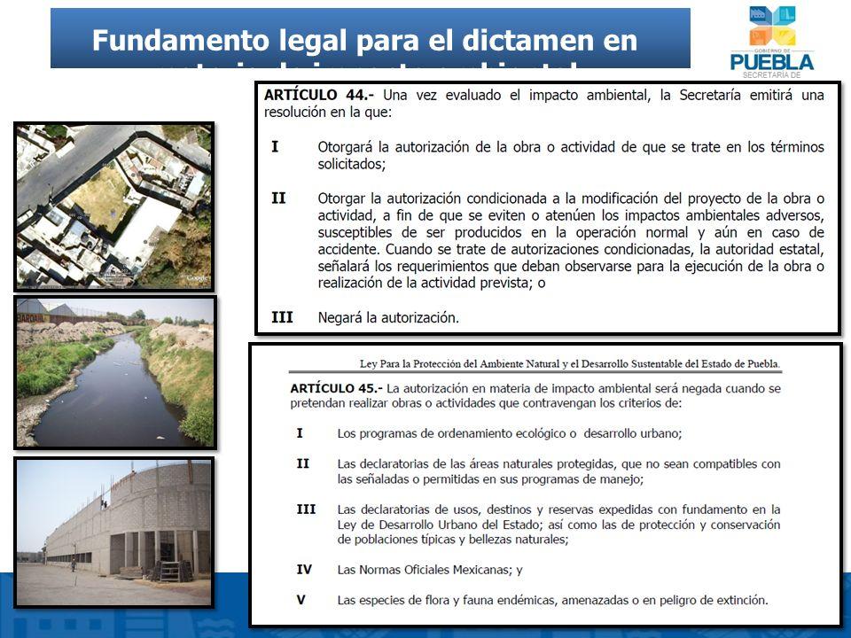 Fundamento legal para el dictamen en materia de impacto ambiental