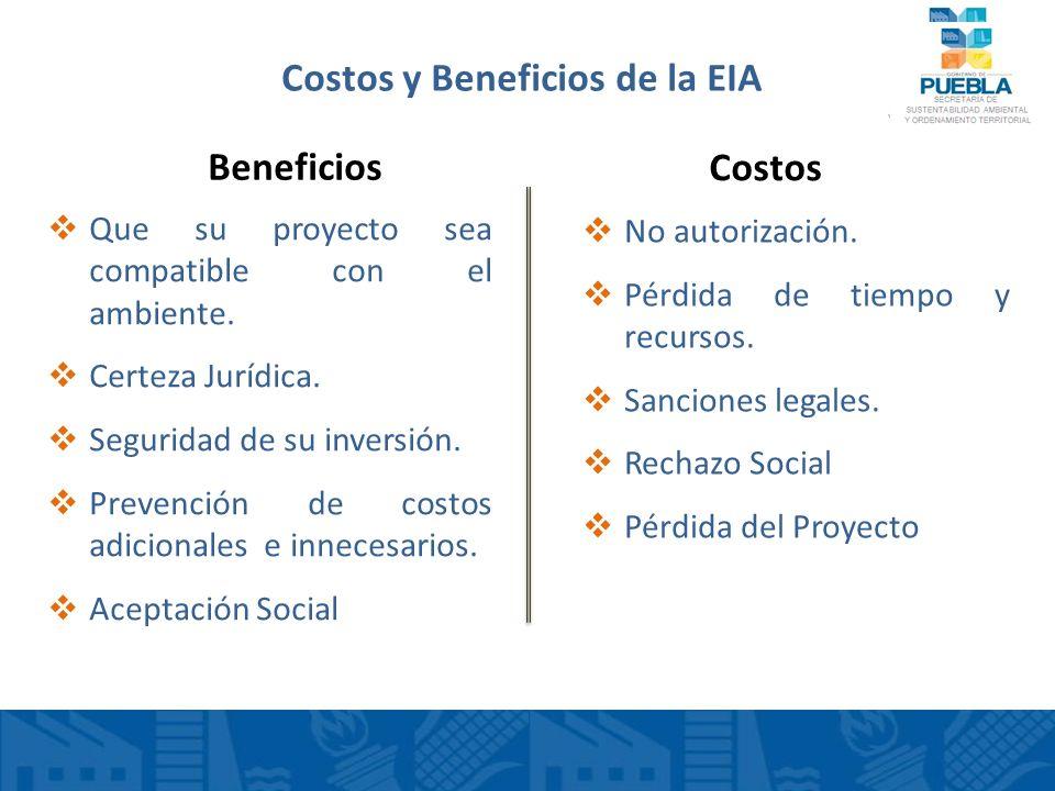 Costos y Beneficios de la EIA