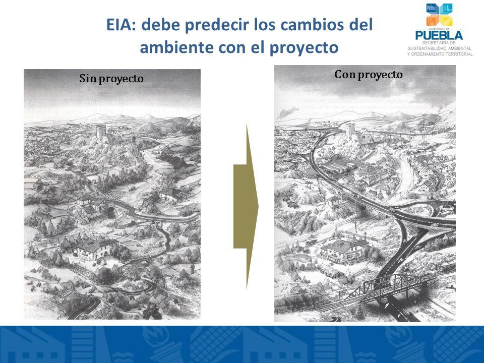 EIA: debe predecir los cambios del ambiente con el proyecto