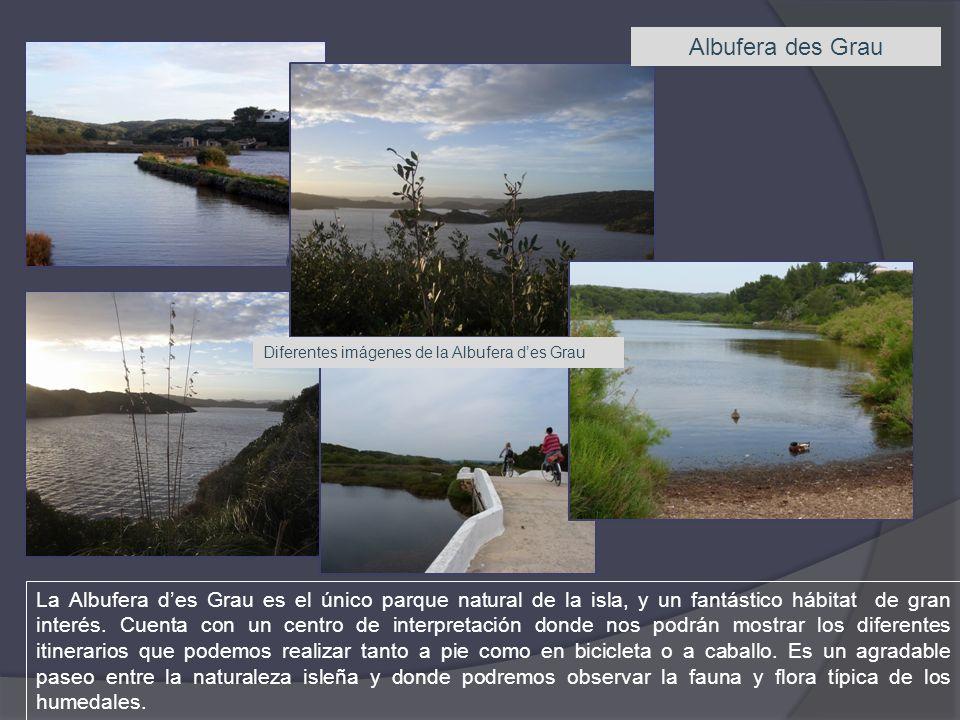 Albufera des Grau Diferentes imágenes de la Albufera d'es Grau.