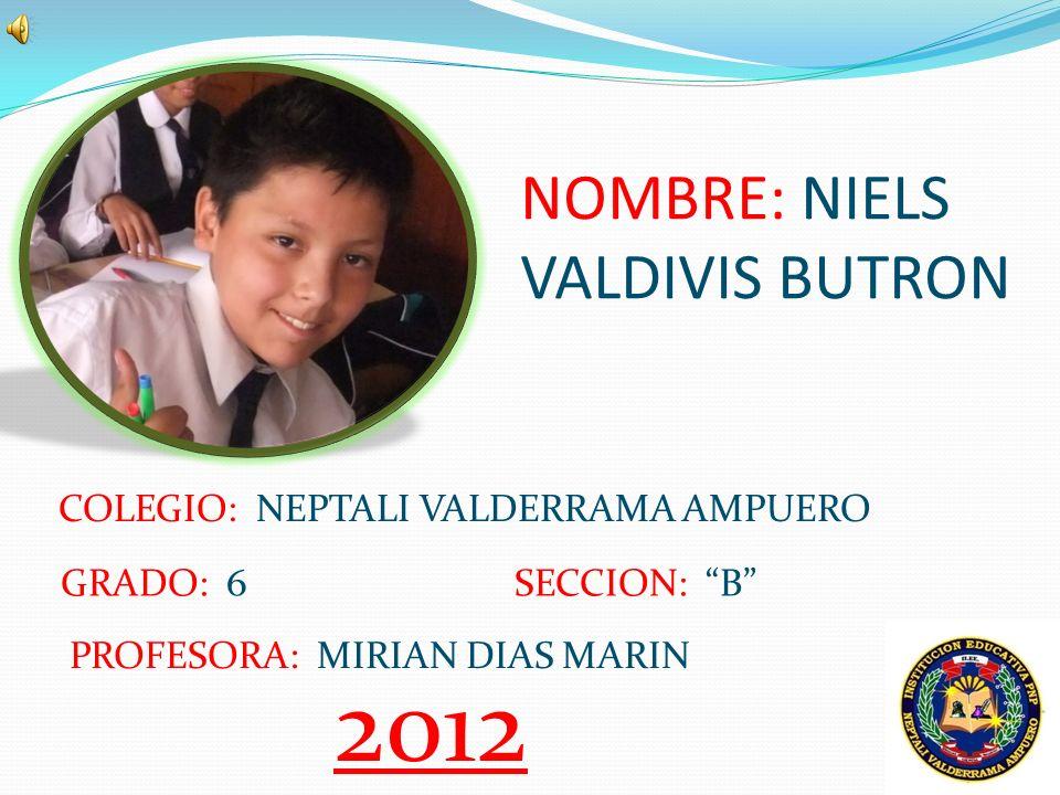 NOMBRE: NIELS VALDIVIS BUTRON