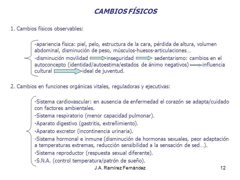 CAMBIOS FÍSICOS 1. Cambios físicos observables: