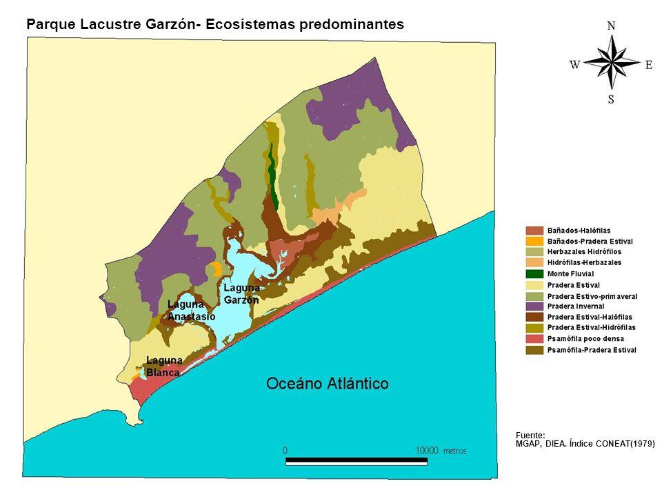 Parque Lacustre Garzón- Ecosistemas predominantes