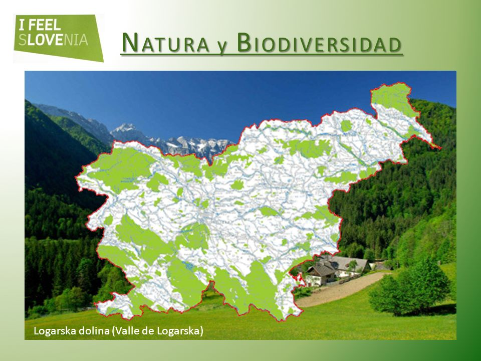 Logarska dolina (Valle de Logarska)