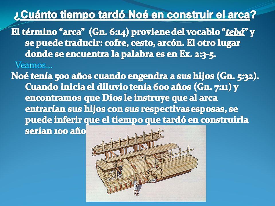 ¿Cuánto tiempo tardó Noé en construir el arca
