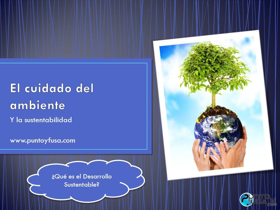 El cuidado del ambiente
