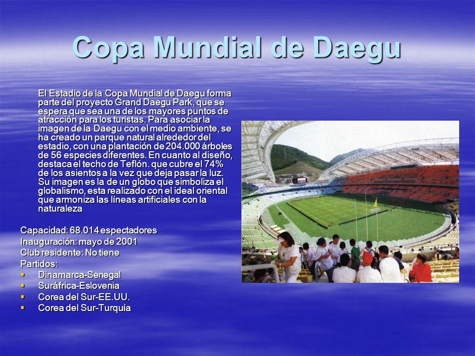 Copa Mundial de Daegu
