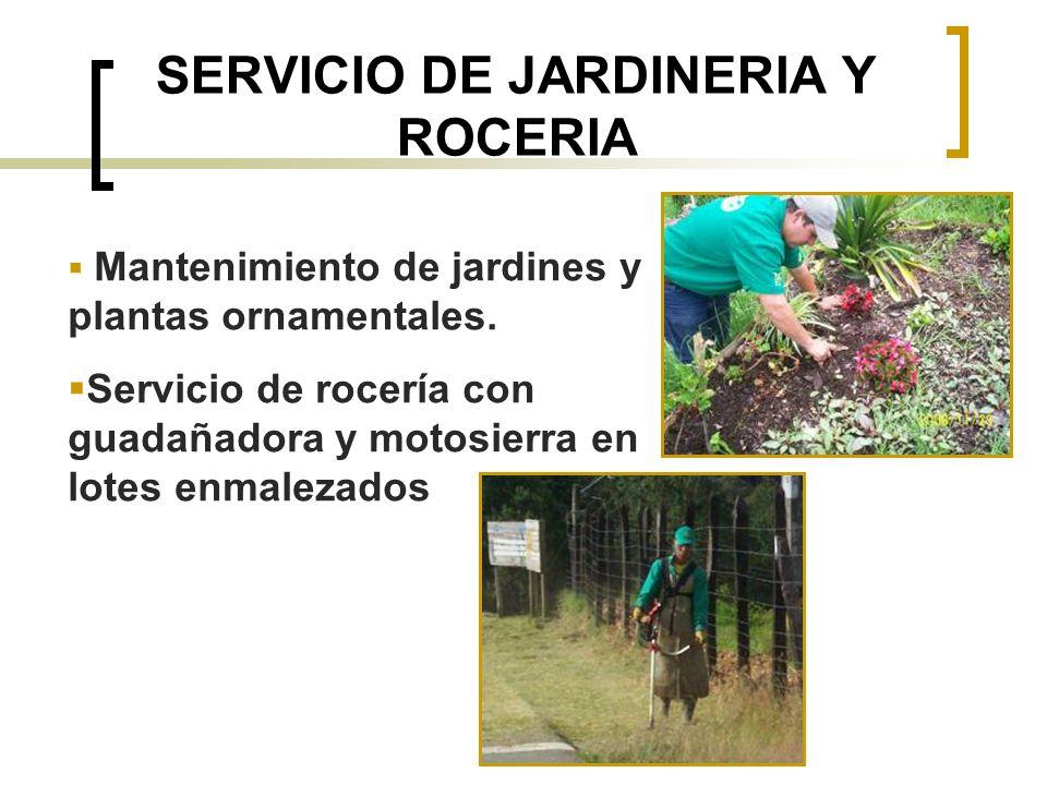 SERVICIO DE JARDINERIA Y ROCERIA