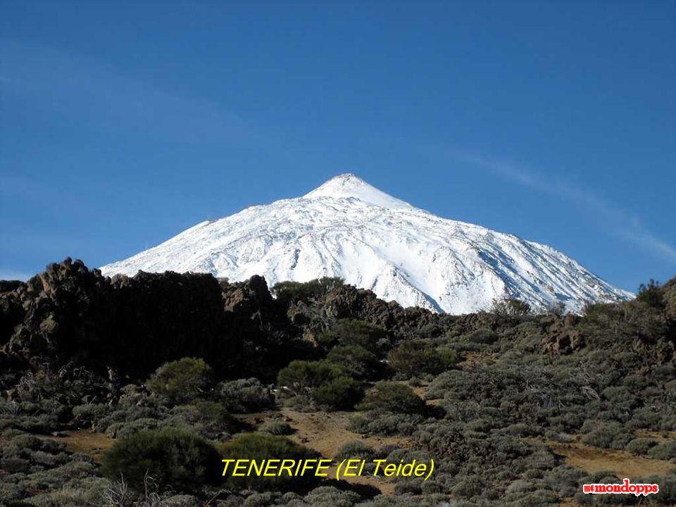 TENERIFE (El Teide)