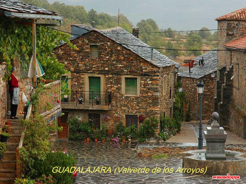 GUADALAJARA (Valverde de los Arroyos)