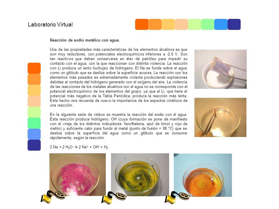 video 1 Laboratorio Virtual Reacción de sodio metálico con agua.