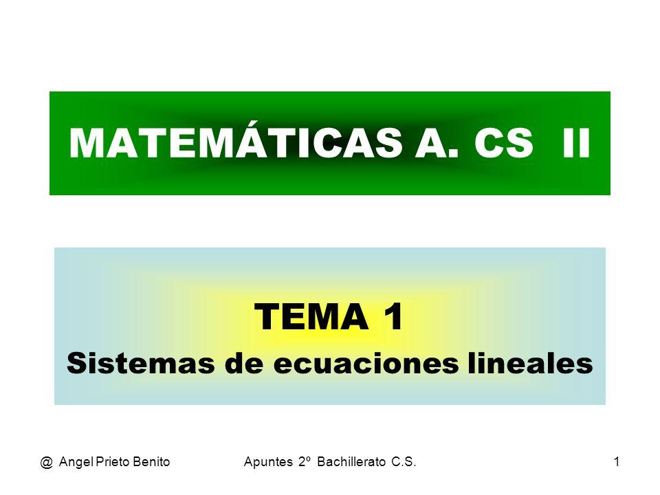 TEMA 1 Sistemas de ecuaciones lineales