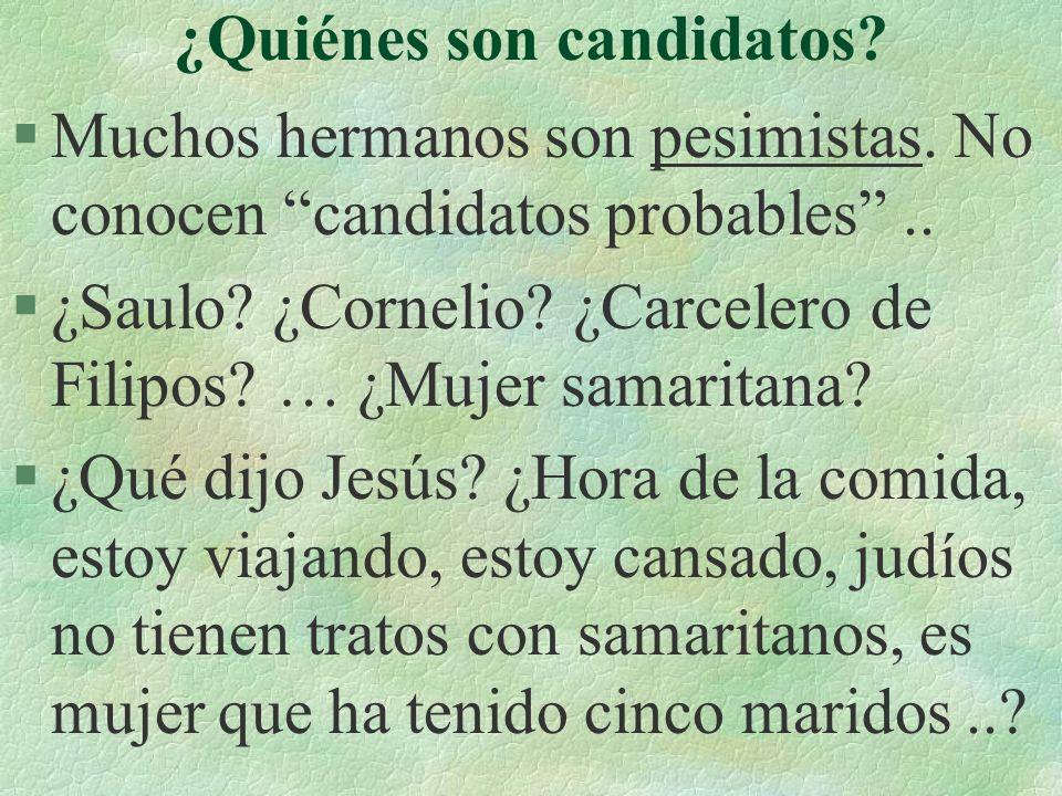 ¿Quiénes son candidatos