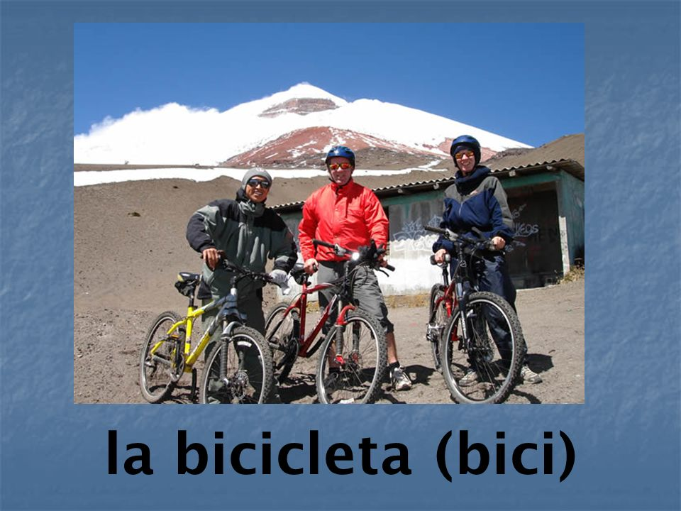 la bicicleta (bici)