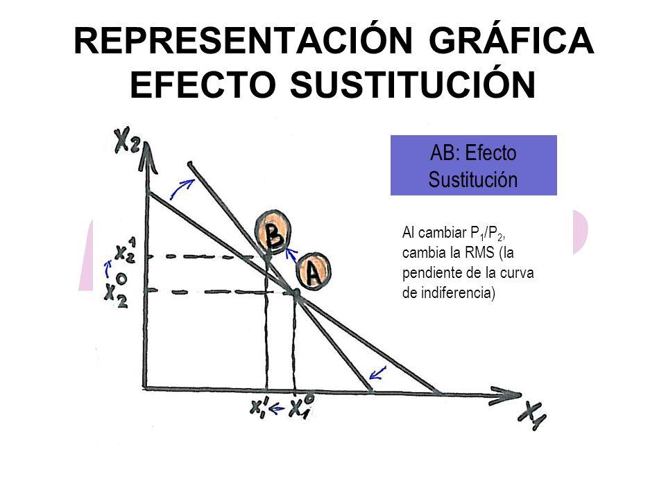 REPRESENTACIÓN GRÁFICA EFECTO SUSTITUCIÓN