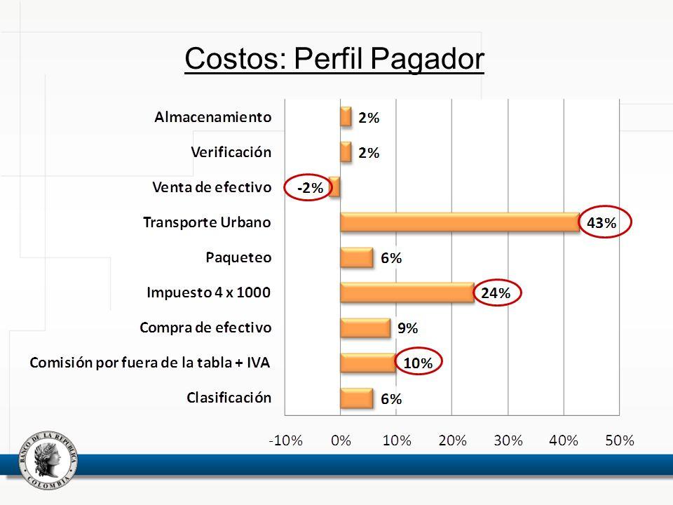 Costos: Perfil Pagador