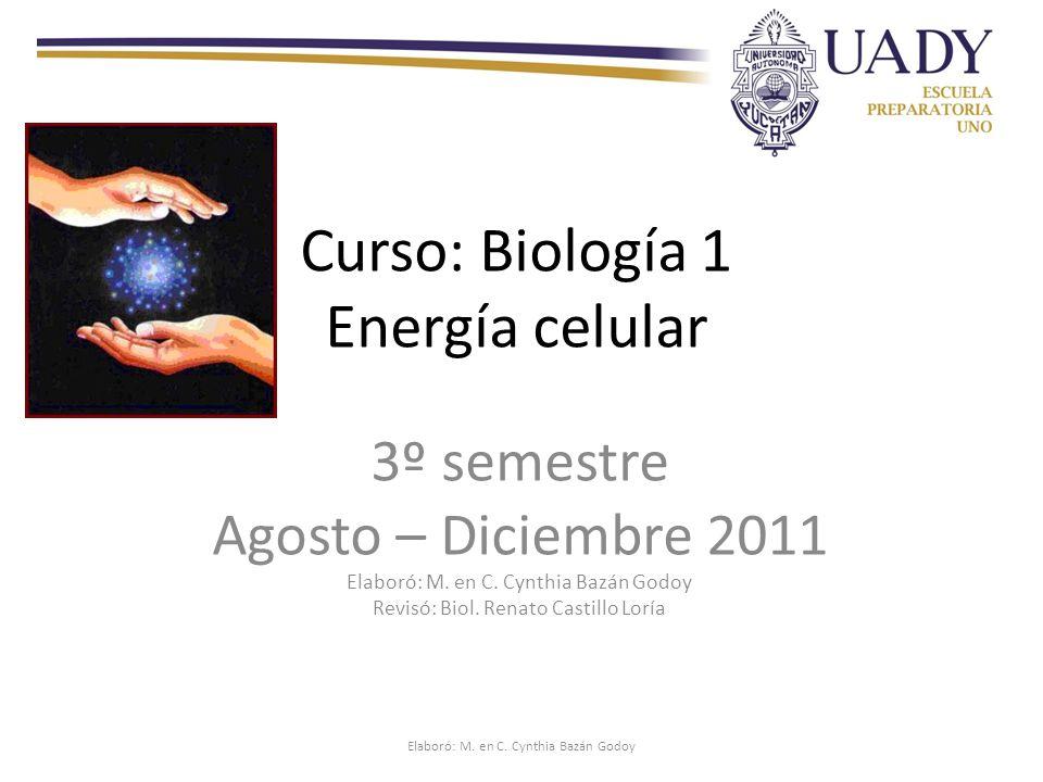 Curso: Biología 1 Energía celular
