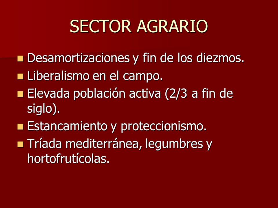 SECTOR AGRARIO Desamortizaciones y fin de los diezmos.