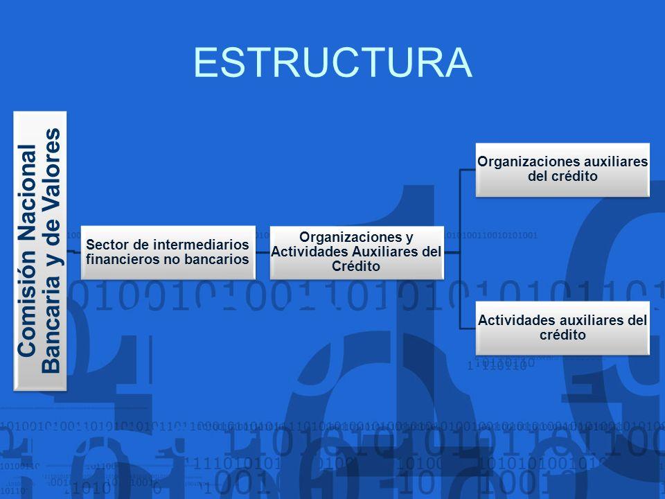 ESTRUCTURA Comisión Nacional Bancaria y de Valores