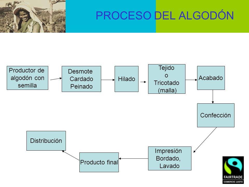 PROCESO DEL ALGODÓN Tejido o Tricotado (malla) Productor de