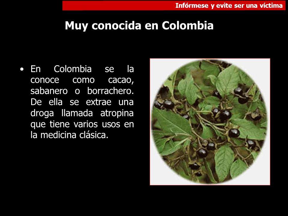 Muy conocida en Colombia