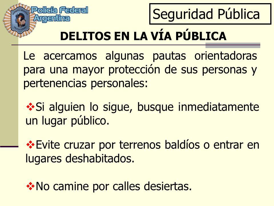 Seguridad Pública DELITOS EN LA VÍA PÚBLICA
