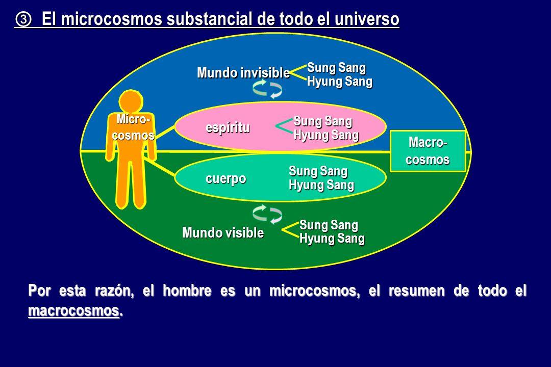 ③ El microcosmos substancial de todo el universo