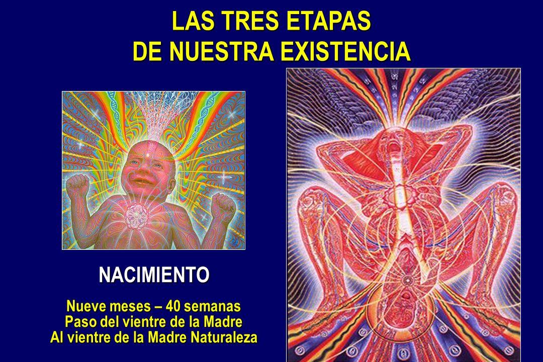 Paso del vientre de la Madre Al vientre de la Madre Naturaleza