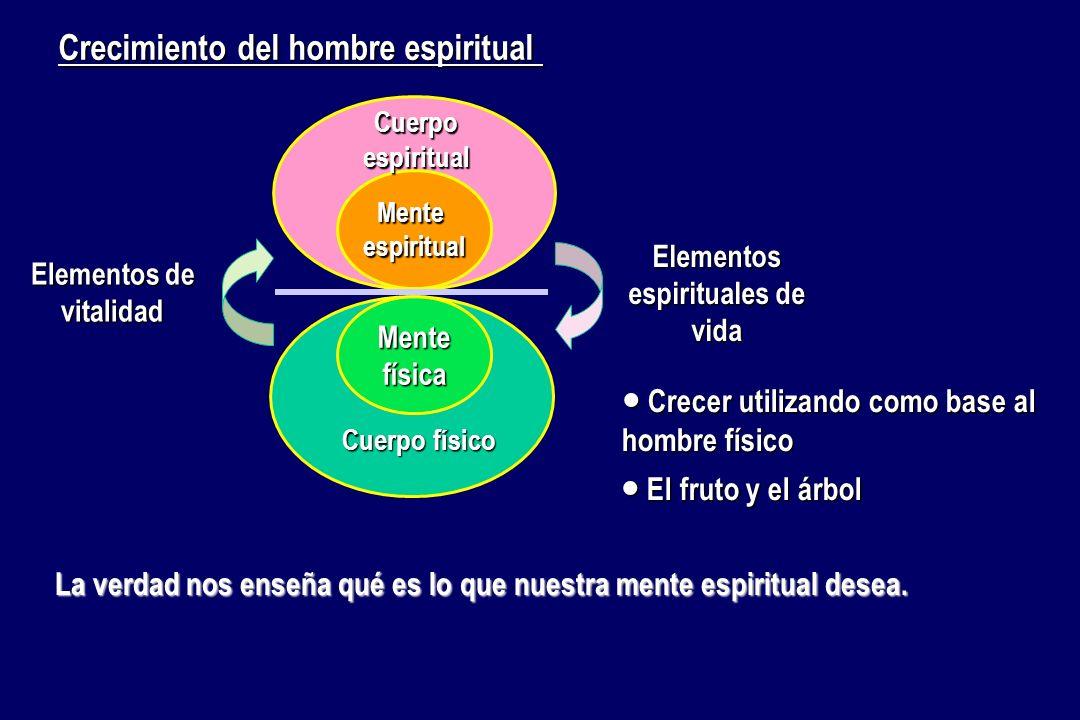 Elementos espirituales de vida Elementos de vitalidad