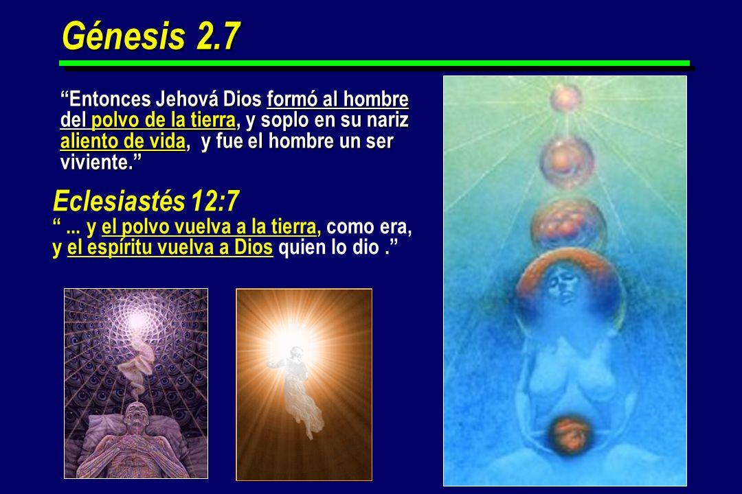 Génesis 2.7 Entonces Jehová Dios formó al hombre del polvo de la tierra, y soplo en su nariz aliento de vida, y fue el hombre un ser viviente.