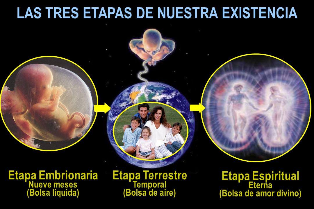 LAS TRES ETAPAS DE NUESTRA EXISTENCIA