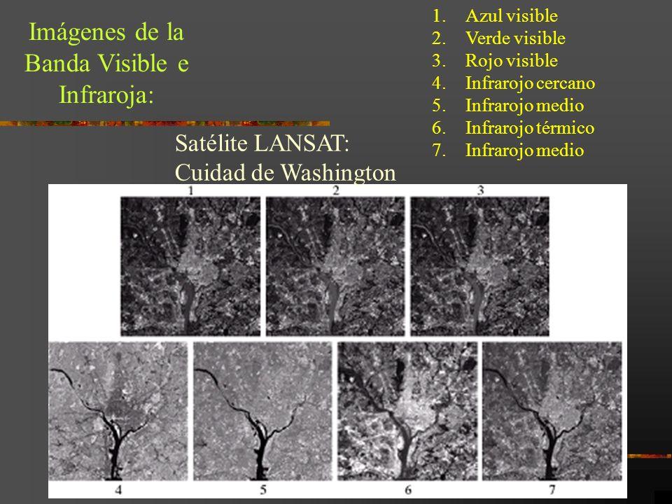 Imágenes de la Banda Visible e Infraroja: