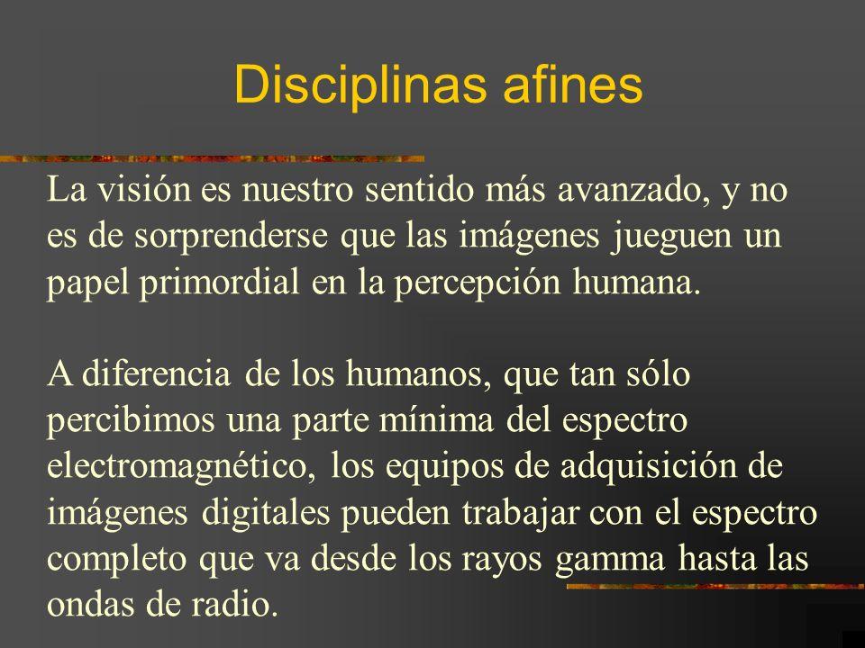 Disciplinas afines La visión es nuestro sentido más avanzado, y no
