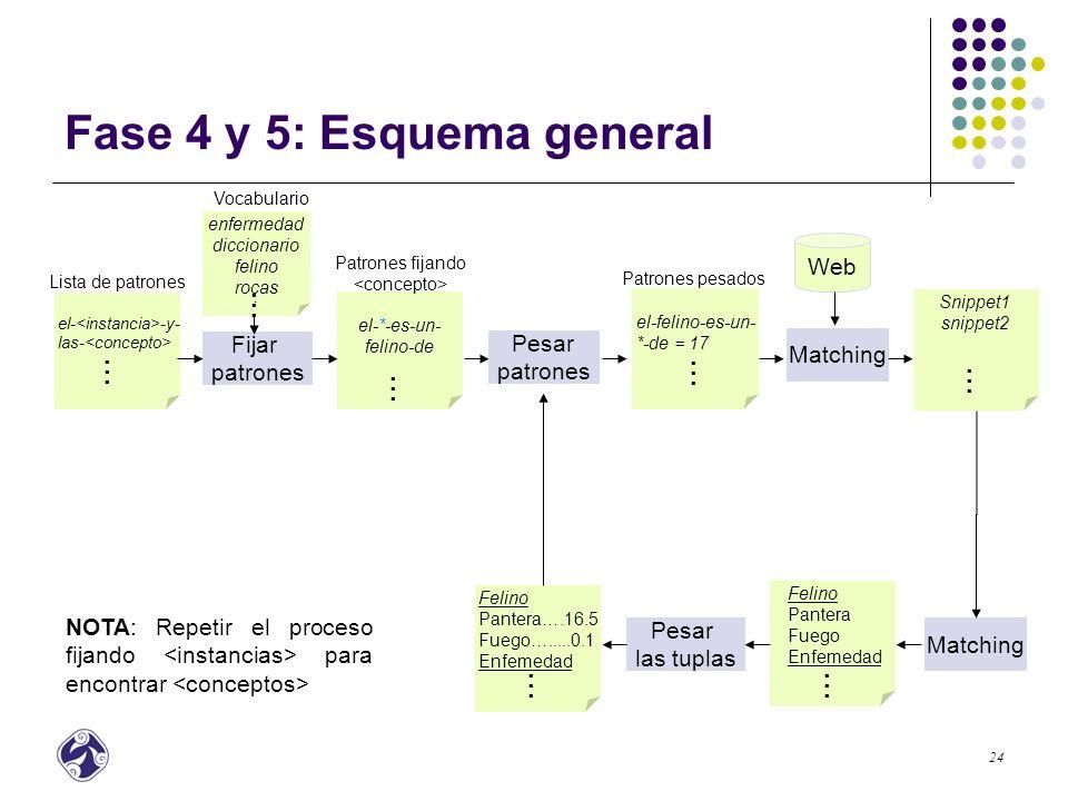 Fase 4 y 5: Esquema general