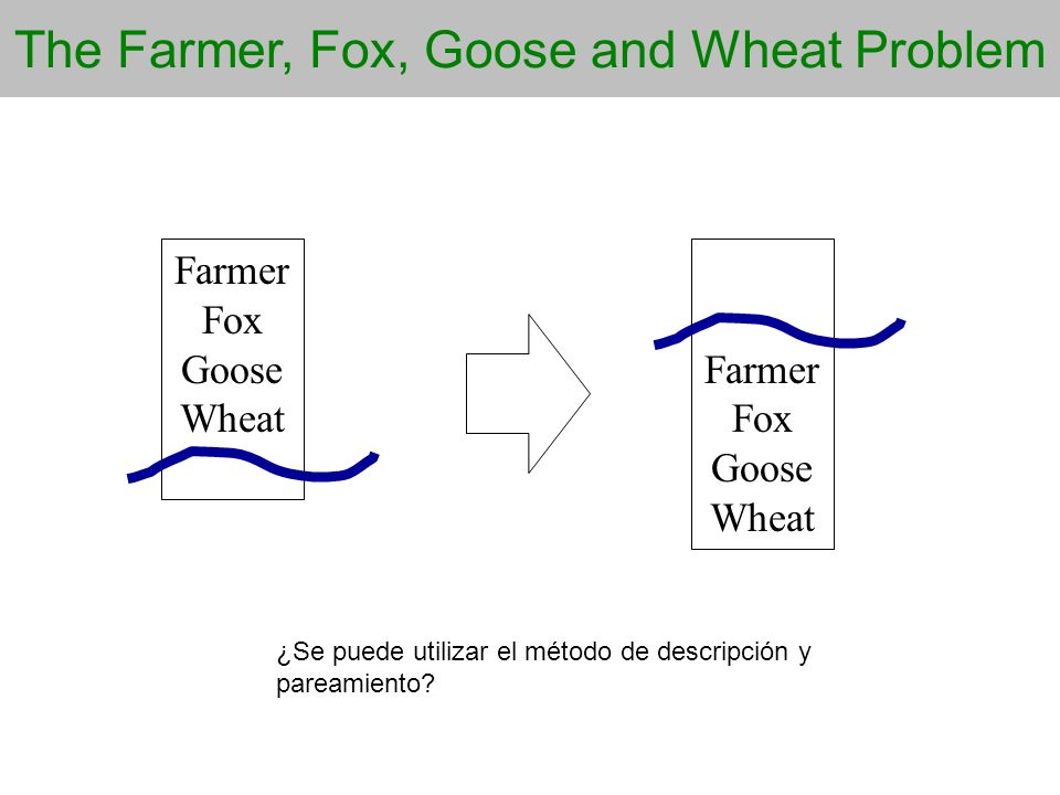 The Farmer, Fox, Goose and Wheat Problem