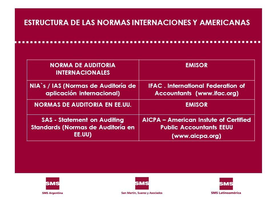 ESTRUCTURA DE LAS NORMAS INTERNACIONES Y AMERICANAS