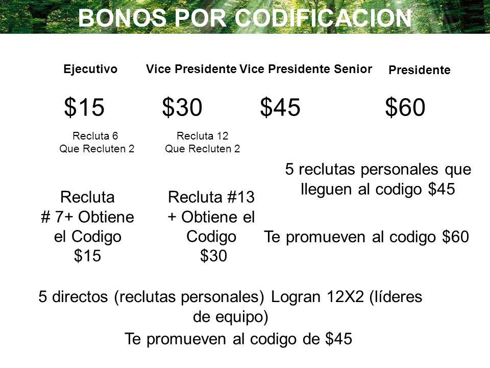 BONOS POR CODIFICACION Vice Presidente Senior