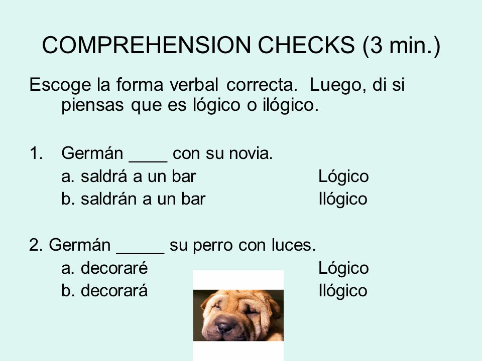 COMPREHENSION CHECKS (3 min.)