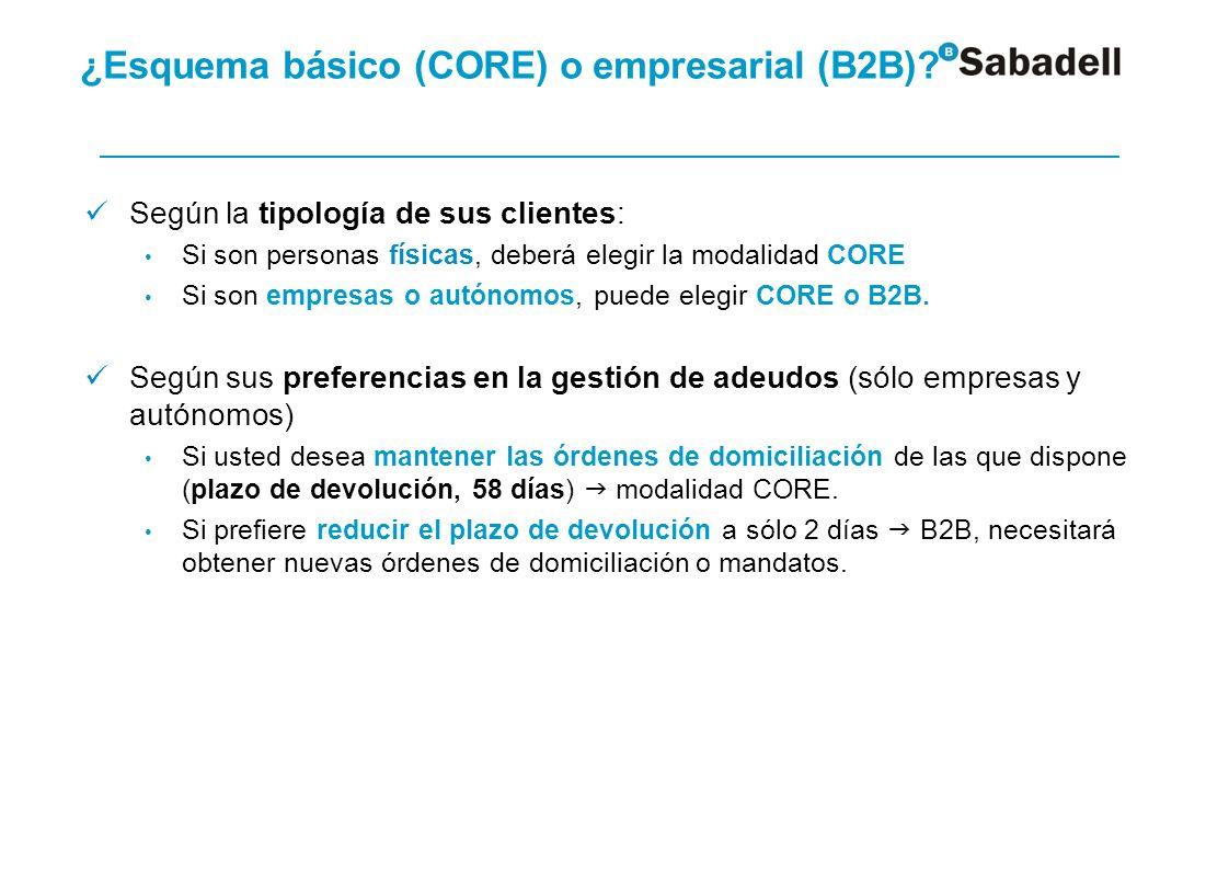 ¿Esquema básico (CORE) o empresarial (B2B) Migración