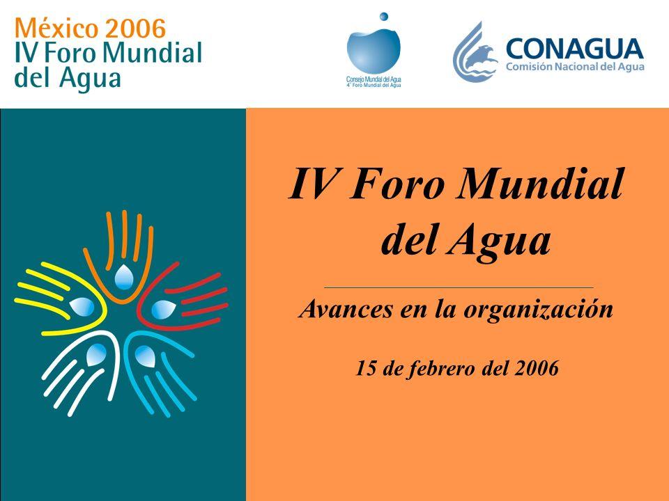 IV Foro Mundial del Agua Avances en la organización