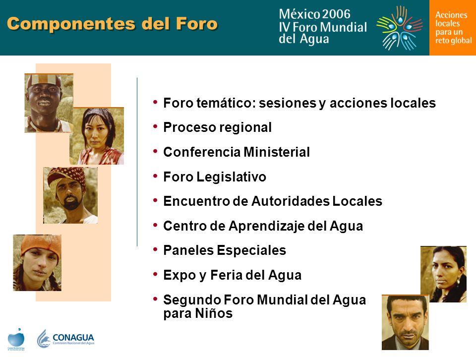 Componentes del Foro Foro temático: sesiones y acciones locales