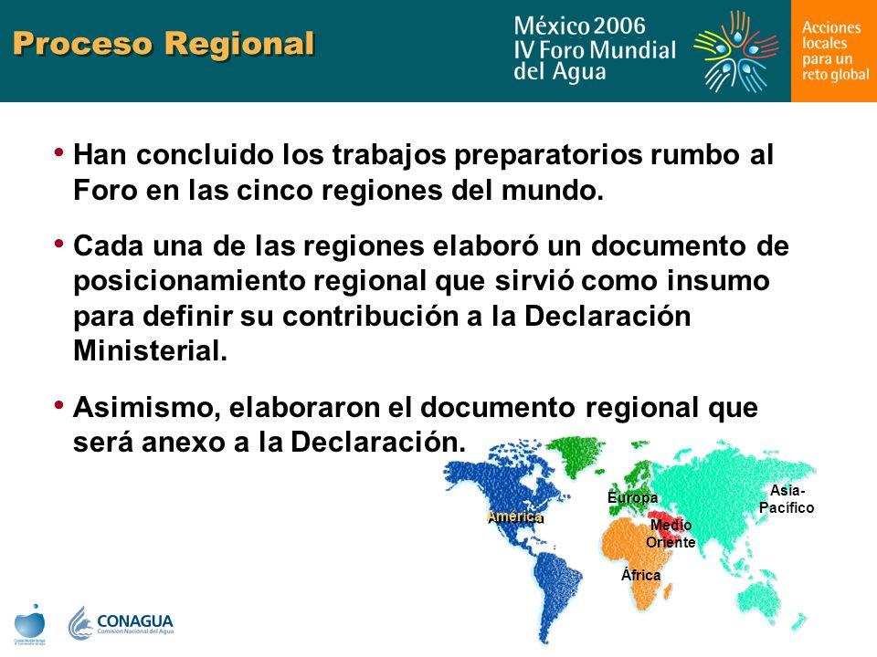 Proceso Regional Han concluido los trabajos preparatorios rumbo al Foro en las cinco regiones del mundo.